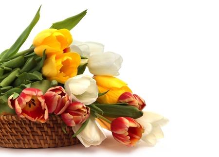 白で隔離されるバスケットでカラフルなチューリップの花束