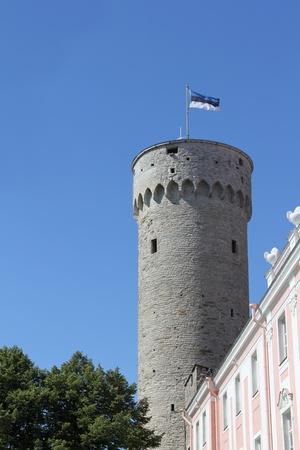 Pikk Hermann tower of old Tallinn in sunny summer day photo