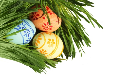 Easter eggs in green spring grass on white background Stock Photo - 12753593