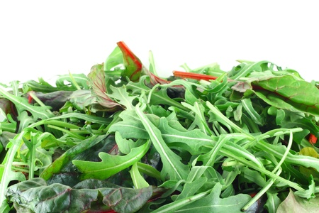 Rucola and Chard salad background with white copy space Stock Photo - 12908510