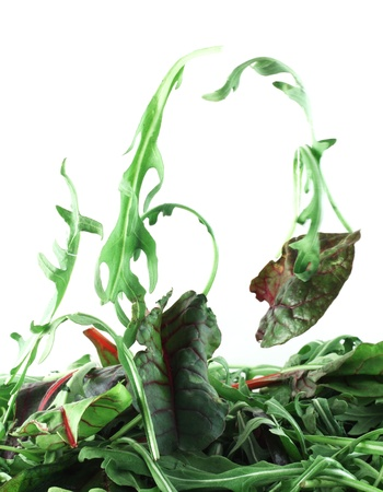 Rucola and Chard flying salad lightness concept