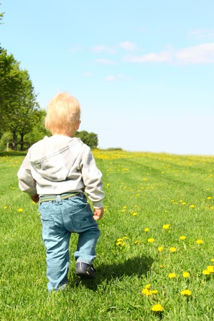 Little child walking on green spring field photo