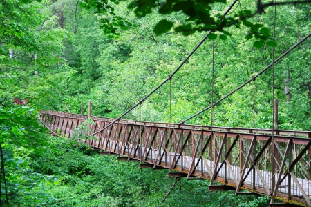 Old narrow bridge in beautiful forest photo
