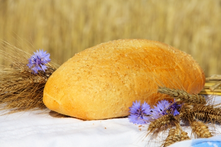 Bread and wheat outdoors natural healthy food concept photo