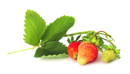 Strawberry with leaves isolated on white background photo