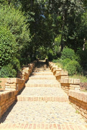 Beautiful garden of Alhambra at sunny day photo