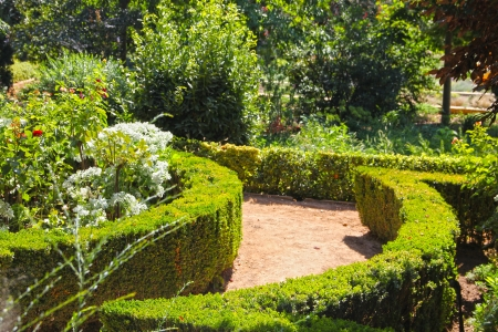 Beautiful garden of Alhambra at sunny day