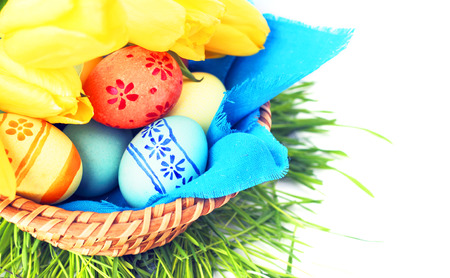 Basket of colored easter eggs and tulips on white background photo