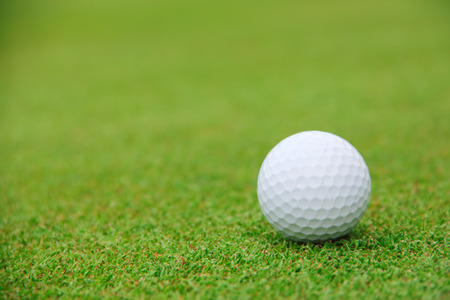 Golf ball on green grass of course close-up view photo