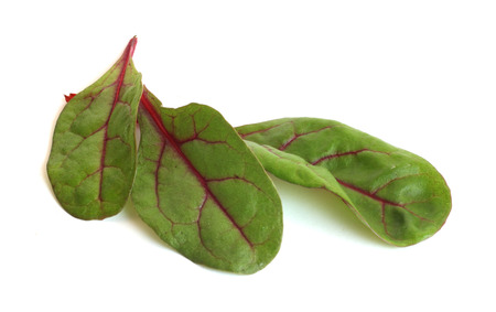 ・ マンゴールド サラダや甘いビート葉に隔離されたホワイト バック グラウンド 写真素材