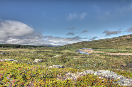 Beautiful tundra landscape in northern Norway at summer 版權商用圖片