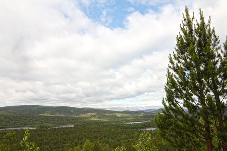 Aerial view of the forest and lake under clouds during the summer photo