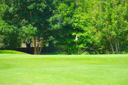 golf drapeau: Golf drapeau sur le terrain et des arbres sur fond