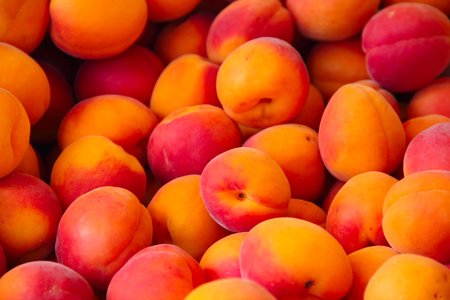 Fresh Apricots in a market close up view