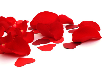 tender passion: Rose petals and hearts isolated on white background with copy space