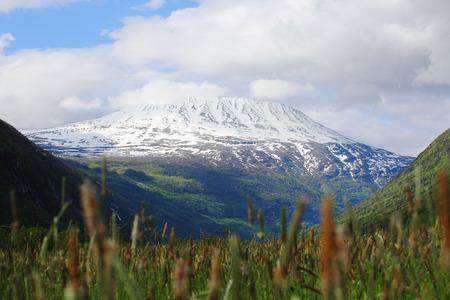 Rjukan、ノルウェーの夏の風景に近い山 Gaustatoppen