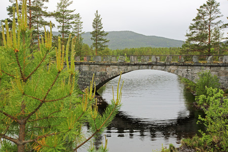 nasty: View on Tinnsja lake, bridge and forest at nasty summer day
