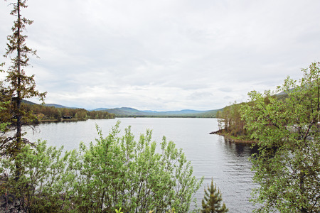 nasty: View on Tinnsja lake and forest at nasty summer day