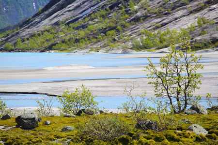 jostedalsbreen: Norwegian landscape with glacial river, moss and trees in Jostedalsbreen National Park, Briksdalen valley, Norway Stock Photo