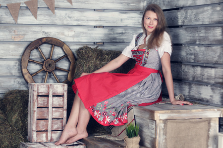 barn girls: Beautiful woman in traditional german dress on hay