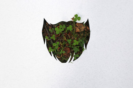 clover face: Hipster beard concept cut of paper, natural clover on background Stock Photo