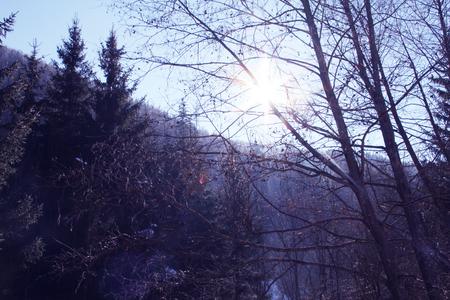 krkonose: Winter mountain landscape in resort Spindleruv Mlyn, Krkonose, Czech Republic Stock Photo