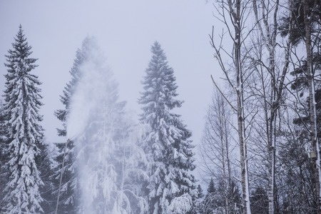 Snowmaking with snow gun, winter forest, alpine ski resort