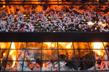 Domestic smokehouse smoker on grill with open fire of wooden logs and pine cones outdoors Imagens