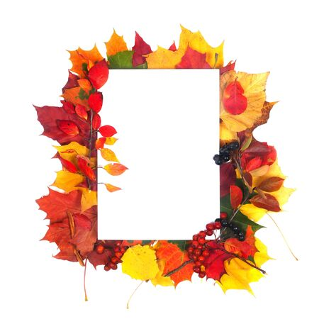 Autumn leaves frame with white paper isolated on white background Stock fotó
