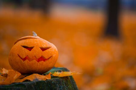 Hojas de otoño naranjas y calabaza de halloween en tocón, fondo con espacio para copiar texto