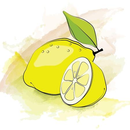 hand jam: Lemon. Vector illustration