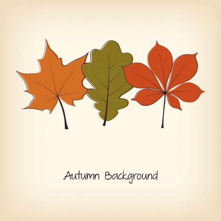 Thanksgiving background with autumn leaves