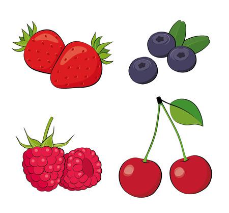 Bessen van de zomer. Aardbeien, bosbessen, frambozen, kersen.