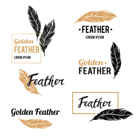 Feather vector symbols collection with golden design elements