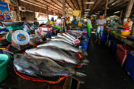 Takua Pa, Thailand - February 22, 2016:  Fresh fish and seafood on local market. Editorial