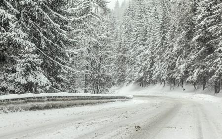 Camino forestal cubierto de nieve durante la tormenta de nieve ventisca de invierno, árboles en ambos lados. Condiciones de conducción peligrosas