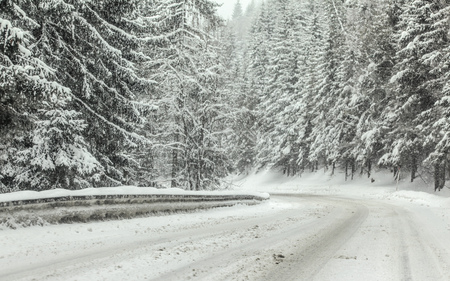 Forest road covered with snow during winter blizzard snowstorm, trees on both sides. Dangerous driving conditions