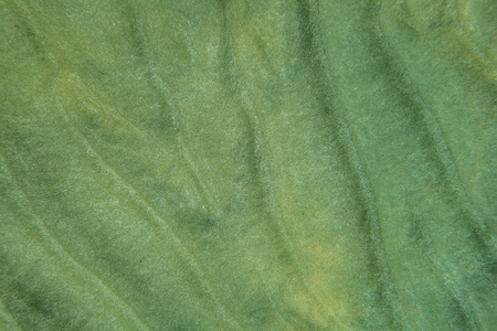 Sea bottom - sand dunes in shallow ocean water, underwater view from above. Abstract marine background.