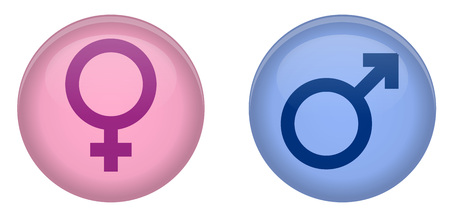 Simple male and female sign 3d circle button. Pink and blue version.