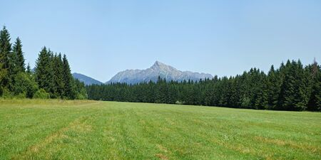 Wide panorama of summer meadow, forest and mount Krivan - Slovak symbol - in background Reklamní fotografie