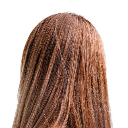 Woman head - detail of light brown hair isolated on white background, view from behind