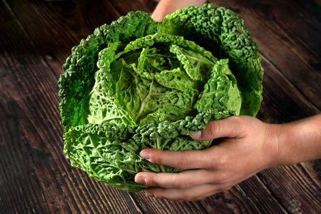 Hands holding savoy cabbage head over dark wooden desk. Banco de Imagens