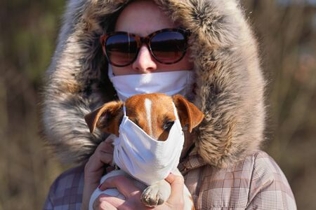 Jack Russell terrier wearing white cotton mouth mask, blurred young owner with virus face mask in background. Pets are not vulnerable to coronavirus covid-19 but some owners protect them nevertheless Archivio Fotografico