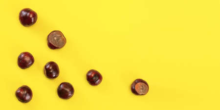 Table top view - horse chestnuts scattered on yellow board. Abstract autumn background with space for text on right.