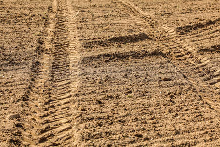 Heavy vehicle (tractor) tire track print in dry field, lit by sun.