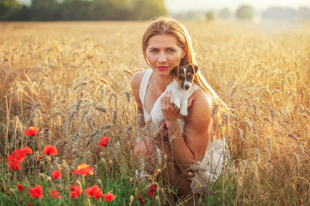 Young athletic woman, kneeling, holding Jack Russell terrier puppy on her hands, some red poppy in foreground and sunset lit wheat field background.