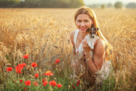 Young woman holding Jack Russell terrier puppy on her hands, sunset lit wheat field in background, some red poppy flowers in front.