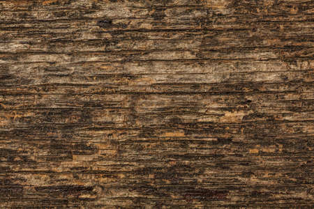 Old wood texture detail on wooden bench.