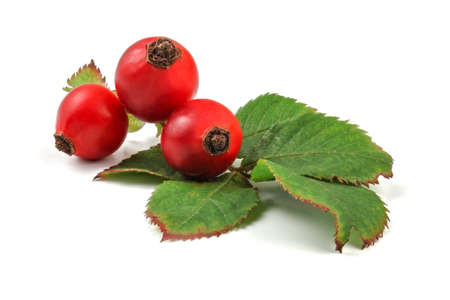 Rose hips (Rosa Canina fruits) with leaves isolated on white background.