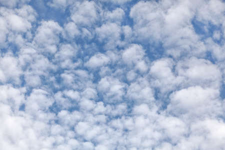 Sky with fluffy ( altocumulus / mackerel skies ) clouds.